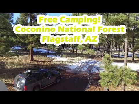 FREE CAMPING In FLAGSTAFF! Coconino National Forest, AZ
