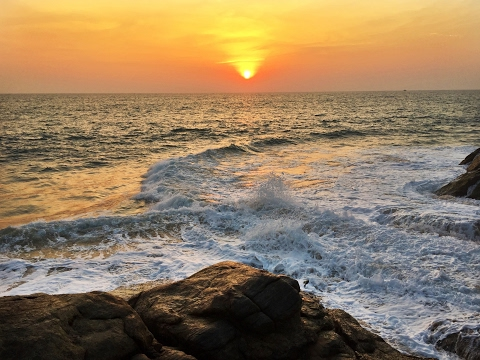 Travel Kerala, India (Beaches, Houseboats, & Rainforest Hikes)