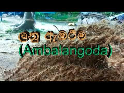 Coconut Rope producing in Ambalagoda , Sri Lanka