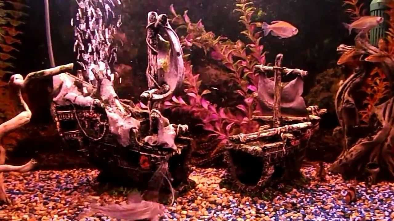 Pirate ship aquarium tropical fish tank youtube for Fish tank pirate ship