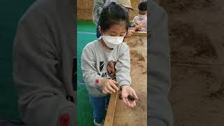 20.10.17 김포곤충농장 나무공예+양서류,곤충,파충…