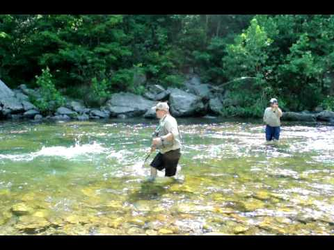 Fly fishing west virginia harman 39 s north fork invitational for West virginia out of state fishing license