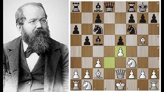 Вильгельм Стейниц как ПАУК затащил Чигорина в сети позиционной игры Шахматы