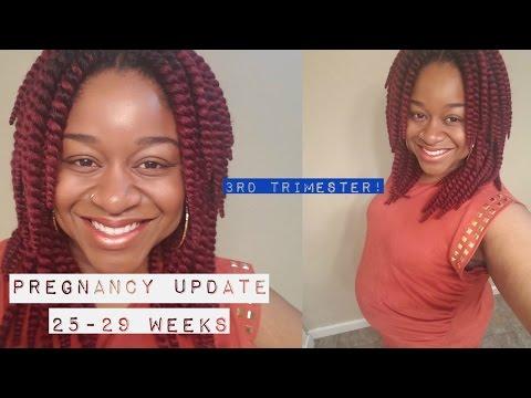 pregnancy-update:-weeks-25-29/-glucose-test,-anemia,-&-rhogam-shot!