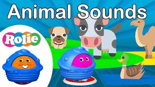 LEARNING with Rolie: ANIMAL SOUNDS for kids - With EMOJIS 🐸🐧 KIDS just LOVE Rolie videos!