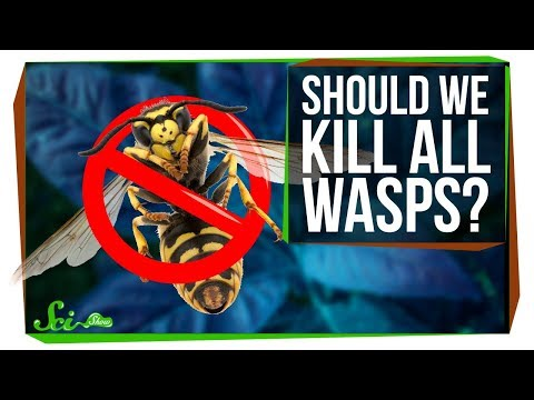 What If We Killed All the Wasps?