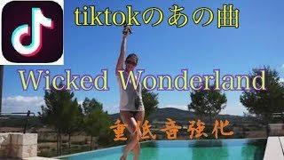 Скачать Wicked Wonderland 重低音強化 Martin Tungevaag