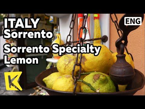 【K】Italy Travel-Sorrento[이탈리아 여행-소렌토]소렌토 특산품 레몬/Lemon/Farm/Specialty