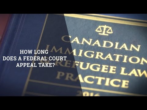 How Long Does A Federal Court Appeal Take?