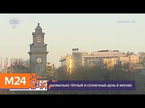 Москвичам пообещали аномально теплую погоду - Москва 24
