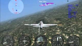 SkinnierSteve play combat flight simulator 3