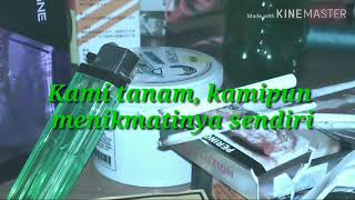 Download lagu Status WA keren ROKOK BAKO SUMATRA MP3