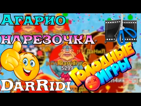 Petri Dish Agar io играть онлайн бесплатно