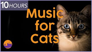10 HOURS of Sleep Music for Cats! Try It and Be Surprised