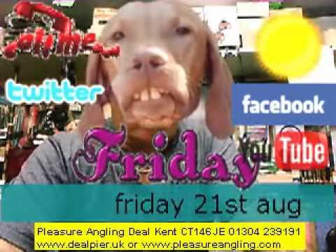 fresh bait daily @pleasure angling bait & tackle shop deal kent 21st aug 01304 239191