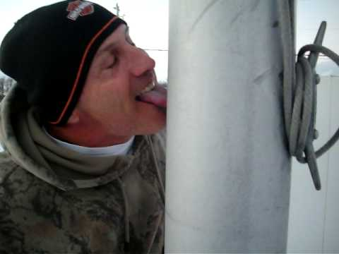 Guy doesn't believe that tongues really stick to frozen poles. Quickly learns otherwise