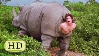 видео где живут носороги