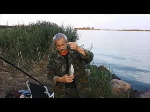 РЫБАЛКА г БАЛТИЙСК 2 АВГУСТА 2017г