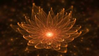 Calming Sleep Music to Reduce Anxiety ☯ Better Sleep and Insomnia Relief