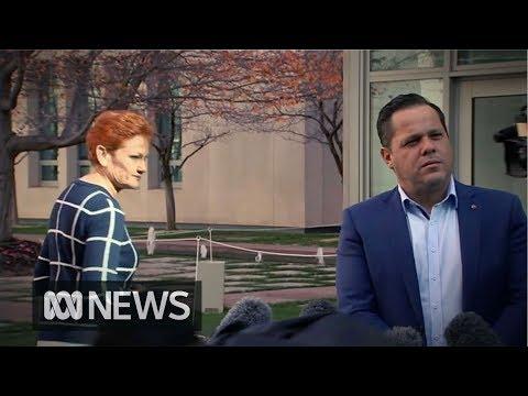 Pauline Hanson insists One Nation isn't split despite senator breaking ranks