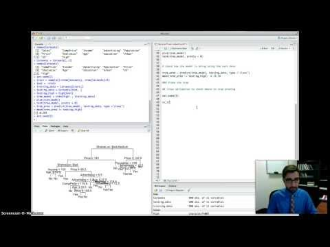 DSO 530: Decision Trees in R (Classification)
