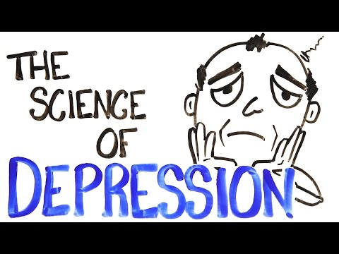 The Biology Behind A Depression