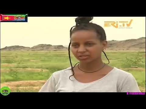 Eritrean New ከርከበት ፍሬ ላሀበት Kerkebet Before and After