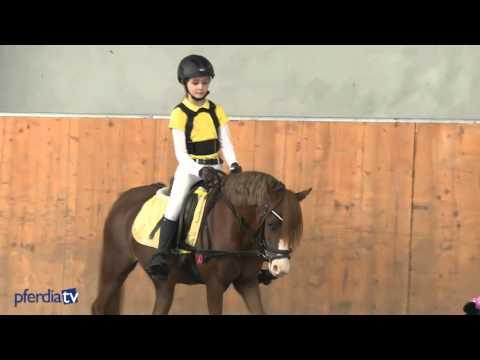 Bild: Ponyreiten - Rauf auf's Pony: Reitanfänge mit und ohne Sattel