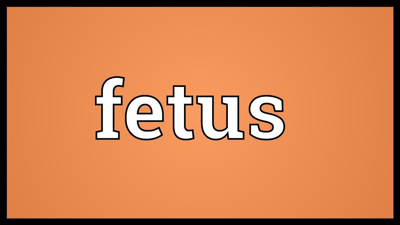 Superior Fetus Meaning