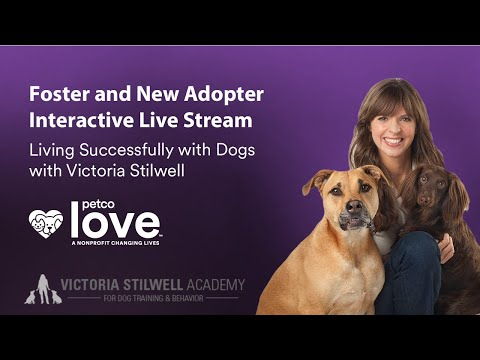 Living Successfully With Dogs With Victoria Stilwell & Petco Foundation