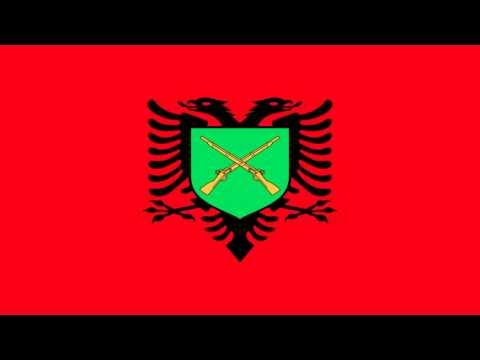 Bandera Ceremonial de la Fuerza Terrestre de Albania - Ceremonial flag of the Albanian Land Forces