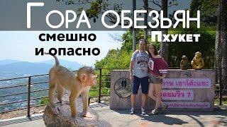Гора обезьян, Пхукет, Таиланд 🐒 милахи и нападение
