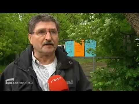 100% Mauerpark - Bürger wehren sich gegen Bebauungspläne