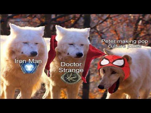 Laughing Wolf Memes V2 Youtube
