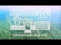 Unicorn Kid - 'Wild life' (Audio Only)