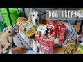 미국간식 먹어보기2 (반려견 과자 Dog Treats) - 골든리트리버 디디