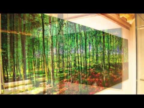 Woodland by Michael von Hassel