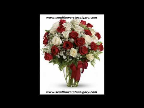 Send flowers from Netherlands to Calgary Alberta Canada
