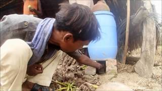 FASAL (Farmers Action for Sustainable Agro-based Livelihoods) Video