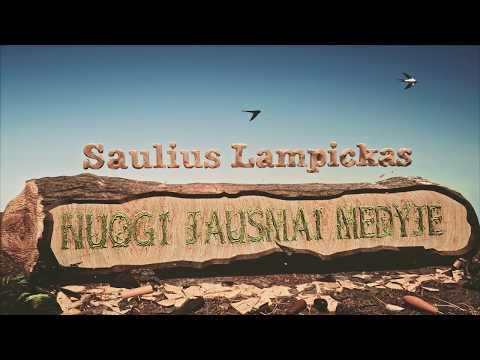 Saulius Lampickas |