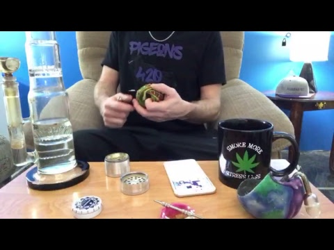 WEDNESDAY NIGHT LIVE SHOW - Police Hallucinating on Edibles, Big Month for Cannabis and more!