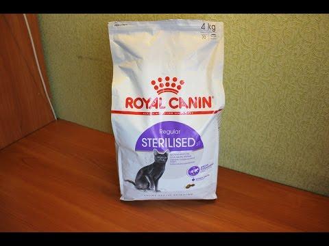 полезные корма какие самые кошек для