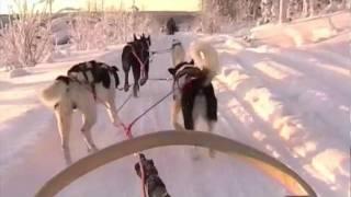 Sejour en Laponie (Premier jour L)