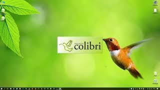Projecto Colibri RCP 13 - Actualização