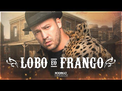 O Lobo e o Frango  - Rodrigo Andrade (Clipe Oficial)