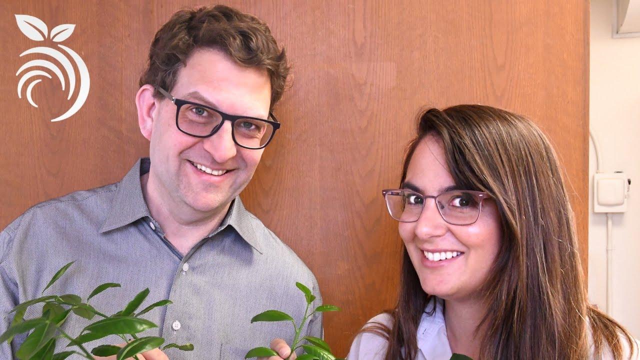 Sâu hại cam quýt - Câu hỏi của bạn được trả lời bởi Tiến sĩ Côn trùng học Monique Rivera