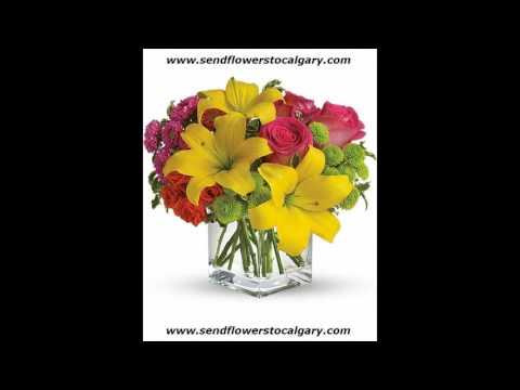 Canada Safeway Florist Edmonton