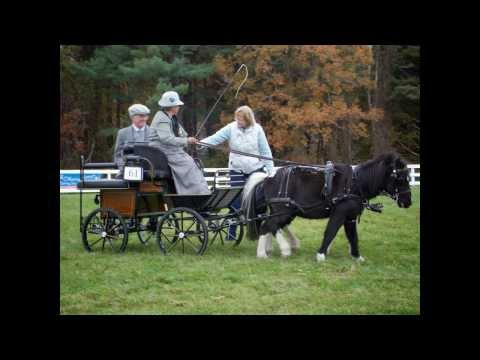 Southern New England Carriage Driving Association Carriage Days Pleasure Driving Show     10/13/13