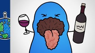 Why Does Wine Make Your Mouth Feel Dry?