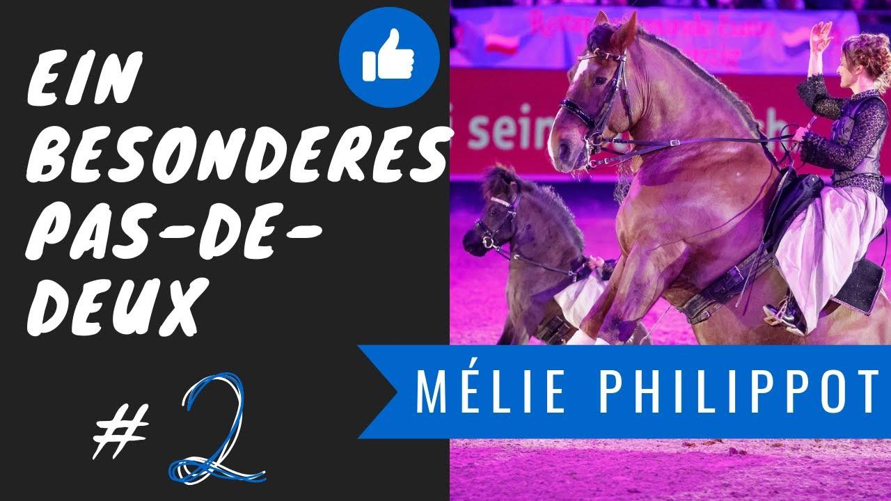 Ein besonderes Pas-de-Deux | Shetty-Dressur auf höchstem Niveau |Mélie Philippot|Puppendressur|